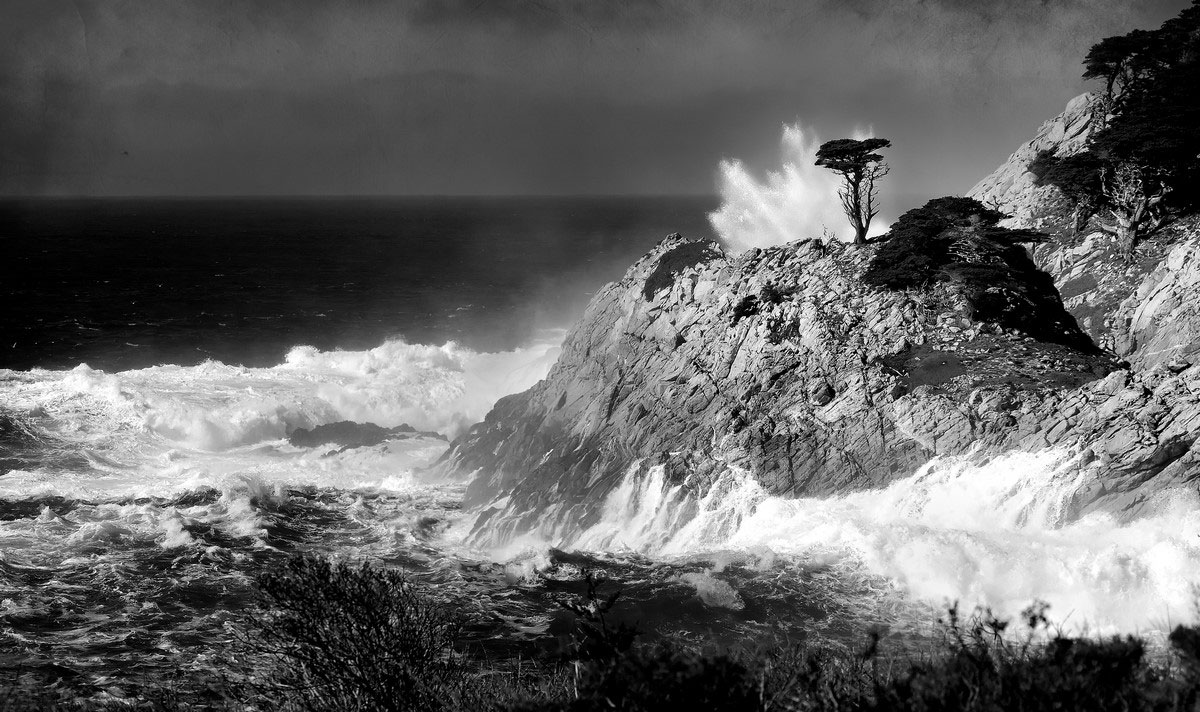 """ ... Splash ..."" - Point Lobos (California)"