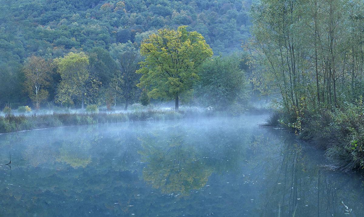 """"""" ... Autumn Mist ... """""""